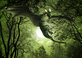 green dragon floating night view