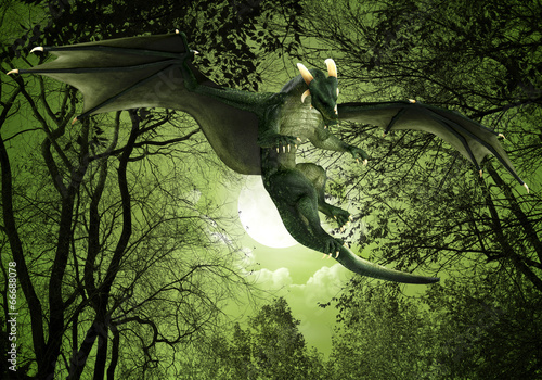 green dragon floating night view - 66688078