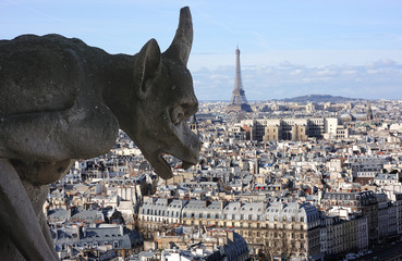 Gargoyle on Notre-dame cathedral in Paris with Eiffel t