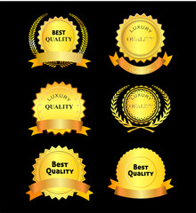 Best and Luxury Quality Vector