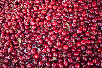 a lot of red cherries