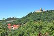 Mühlberg mit Drei Gleichen Burgen