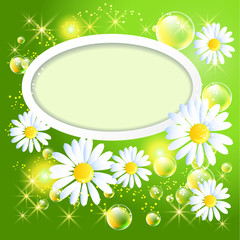 Wite frame with daisy and bubbles