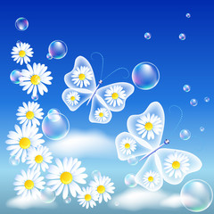Transparent butterflies and daisy