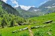 Mountain paths and majestic views of the Carpathians