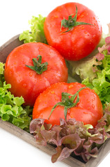 Tomatoes and salad in a basket