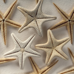 Starfish on handmade paper background