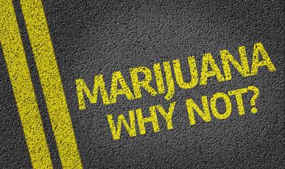 Marijuana, Why Not? written on the road