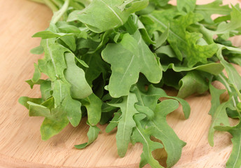 Fresh rucola salad or rocket lettuce leaves