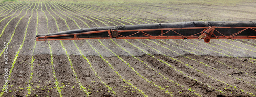 Agriculture, soy field spraying in spring - 66704257