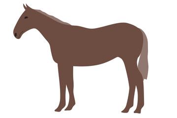 馬のイラスト 左向き