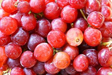 Fresh Red Globe Grapes Background