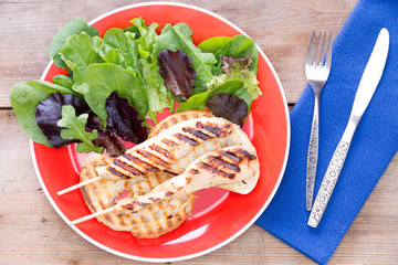 Simple grilled chicken strips served with salad above view