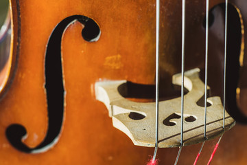 contrabass strings