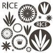 Rice. Set