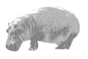 word hippopotamus mixed to be figure of hippopotamus, with typog