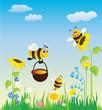 Obrazy na płótnie, fototapety, zdjęcia, fotoobrazy drukowane : Meadow and bees