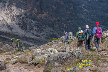 Small group descending to Barranco Camp, Kilimanjaro