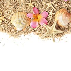 sand and seashells frame isolated on white background