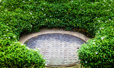 steel manhole cover in green garden
