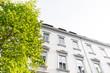 nobles Haus und Bäume - Altbau