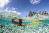 Drifting Coconut