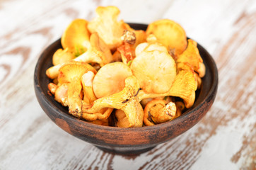 Chanterelle mushroom in clay bowl on wooden background