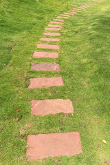 walkway on the green grass
