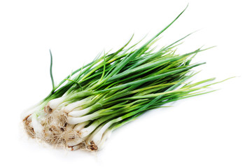 spring onion on white background