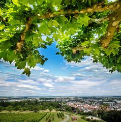 Ausblick von Oben: Blick auf Bad Nauenheim :)