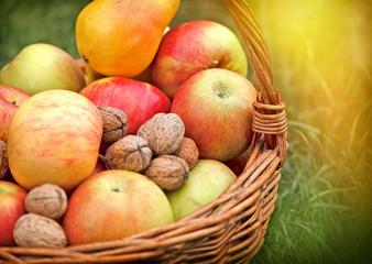 Autumn fruits in wicker basket