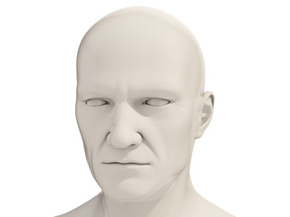 Human head isolated