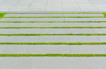 Stone block walk path in the park with green grass