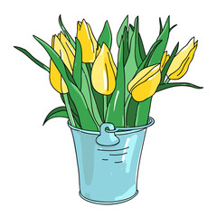 Vector hand drawn flowers tulips in bucket