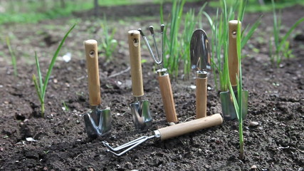 Set of the garden manual tool on a bed