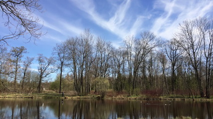 Clouds over the forest and the lake, time-lapse