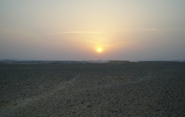 Evening scene in desert