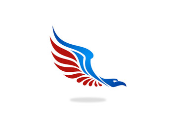 american eagle hawk vector