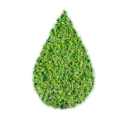 Green grass ecological drop water concept