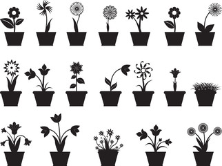 Set of flowers in pot illustrated on white
