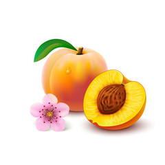 Peach with slice on white background