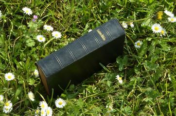 Bible Bibbia Biblia Biblĭa Bibel Biblia Библия الكتاب المقدس