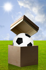 Soccer in the open box