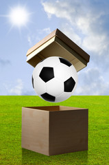 Soccer in open box
