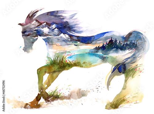 Fototapety, obrazy : horse