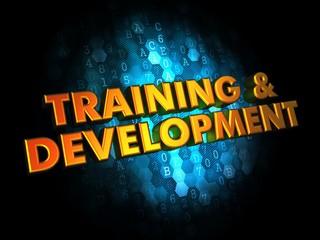 Training and Development on Digital Background.