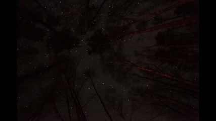 night sky timelapse