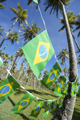 Brazilian Flag Bunting Coconut Palm Trees Grove