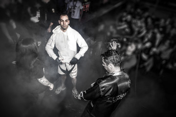 Gabriele Nanosetti, Italian MMA Fighter