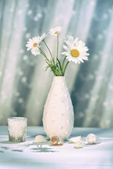 Summer daisies in vase